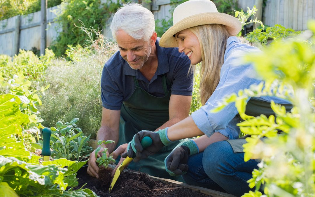 Simplistic Ways Seniors Can Prepare For Gardening Season